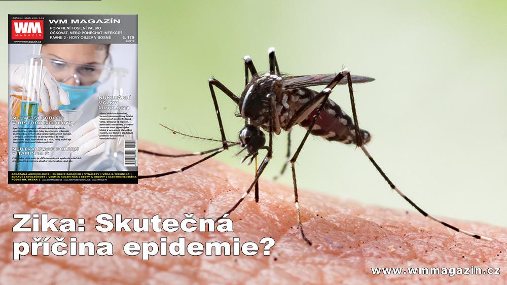 wm-170-zika-epidemie-chripka.jpg