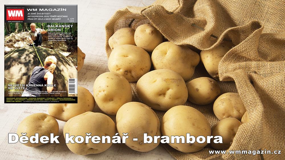 wm-177-brambora-lecive-ucinky.jpg