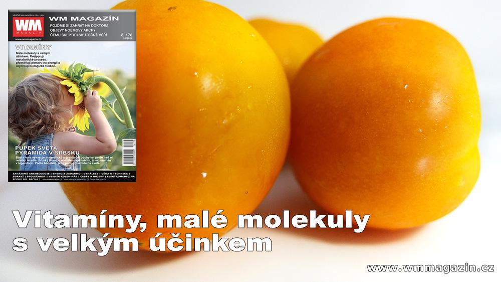 wm-178-vitamin-velky-ucinek.jpg