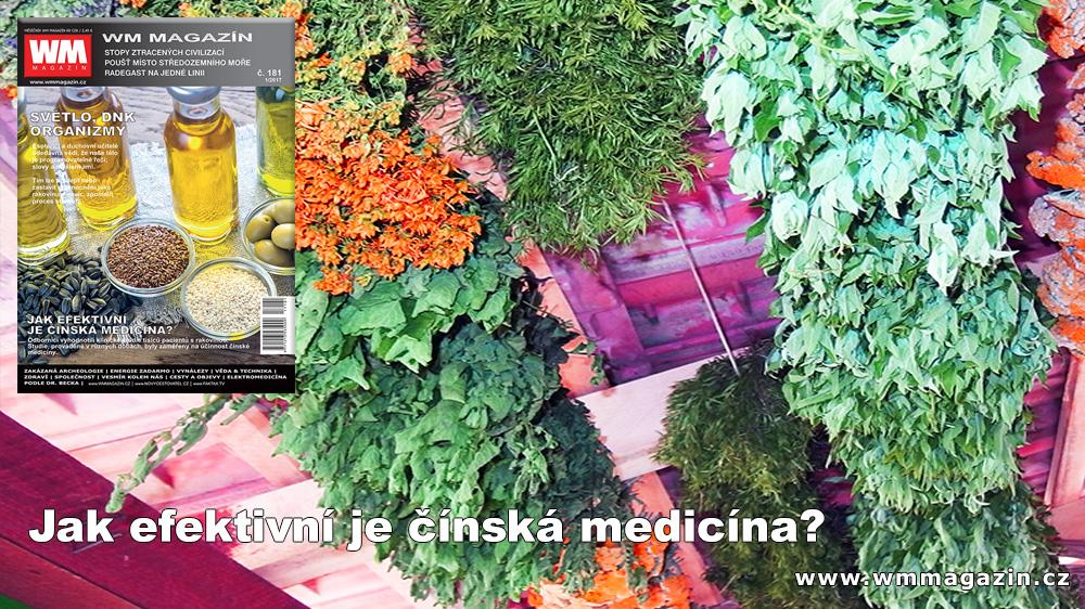 wm-181-cinska-medicina.jpg